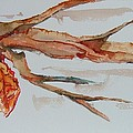 Last Leaf by Elaine Duras