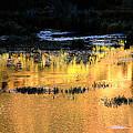 Last Light Near Telluride by Steve Archbold