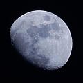 Last Moon Of 2014 by Pamela Walton