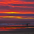 Last Of The Light by Robert Bales