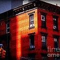 Last Rays Of The Sun - Old Buildings Of New York by Miriam Danar