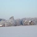 Last Winter 2 by Bonfire Photography