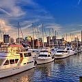 Late Afternoon At Constitution Marina - Charlestown by Joann Vitali