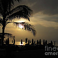 Late Afternoon In Mobay by Addie Hocynec