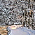 Late Afternoon In The Snow by Eleanor Abramson