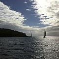 Late Afternoon Sail by Karen Zuk Rosenblatt