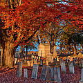 Late Afternoon Sun  by Jeff Folger