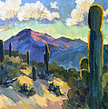 Late Afternoon Tucson by Diane McClary