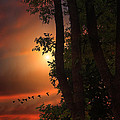 Late August Sunset by Tom York Images