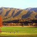 Late Autumn Afternoon In Cades Cove by Rodney Lee Williams