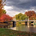 Late Autumn by Joann Vitali