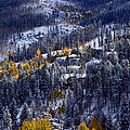 Late Fall In Vail by Ellen Heaverlo