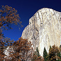Late Light On Face Of  El Capitan by Gerry Ellis