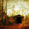 Late October by Gothicrow Images