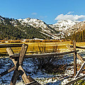Late Spring Snow At Squaw by Nancy Marie Ricketts