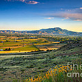 Late Spring Time View by Robert Bales