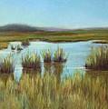 Late Sun On The Marsh by Beth Johnston