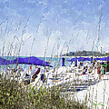 Late Winter Early Spring When Everybody Goes To Florida by Susan Molnar
