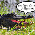 Later Alligator Greeting Card by Al Powell Photography USA