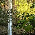 Latourell Falls I by Dan Sabin