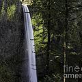 Latourell Falls by Tim Moore