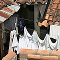Laundry by David Beebe