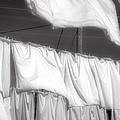 Laundry Day by David Stone