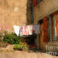 Laundry Day by Terry Rowe