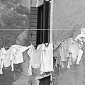 Laundry I Black And White Venice Italy by Sally Rockefeller