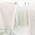 Laundry On The Line In Pink And Green by Brooke T Ryan