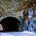 Laurel Creek Road Tunnel by Paul Mashburn