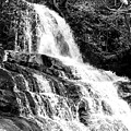Laurel Falls Smoky Mountains 2 Bw by Cynthia Woods
