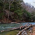 Laurel Hill Creek by Jake Donaldson