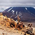 Lava Sculptures And Volcanoe Mount Ngauruhoe Nz by Stephan Pietzko