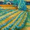 Lavendar Fields by Bianca Romani
