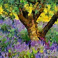 Lavender And Olive Tree by Dragica  Micki Fortuna