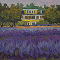 Lavender Farm On Vashon Island by Diane McClary