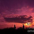 Lavender Field Sunset At Kuki In Saitama by Beverly Claire Kaiya