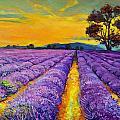 Lavender by Ivailo Nikolov