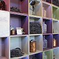 Lavender Museum Shop by Pema Hou