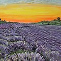 Lavender Oasis by Connie Rowsell