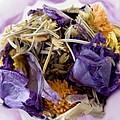 Lavender Potpourri by Robin Lynne Schwind