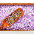 Lavender Seeds and Bath Salts by Olivier Le Queinec