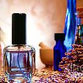 Lavender Shop by Olivier Le Queinec