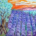 Lavender  by Vicky Tarcau