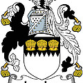 Lawless Coat Of Arms Irish by Heraldry