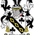 Lawson Coat Of Arms Irish by Heraldry