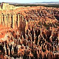 Layered Hoodoos At Bryce Canyon National Park by Rincon Road Photography By Ben Petersen