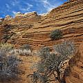 Layered Sandstone by David Davis