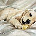 Lazy Bones by Mary Sparrow